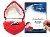 Echte Sternschnuppe in roter Herzbox inkl. personalisierbarem Sternschnuppenzertifikat mit...